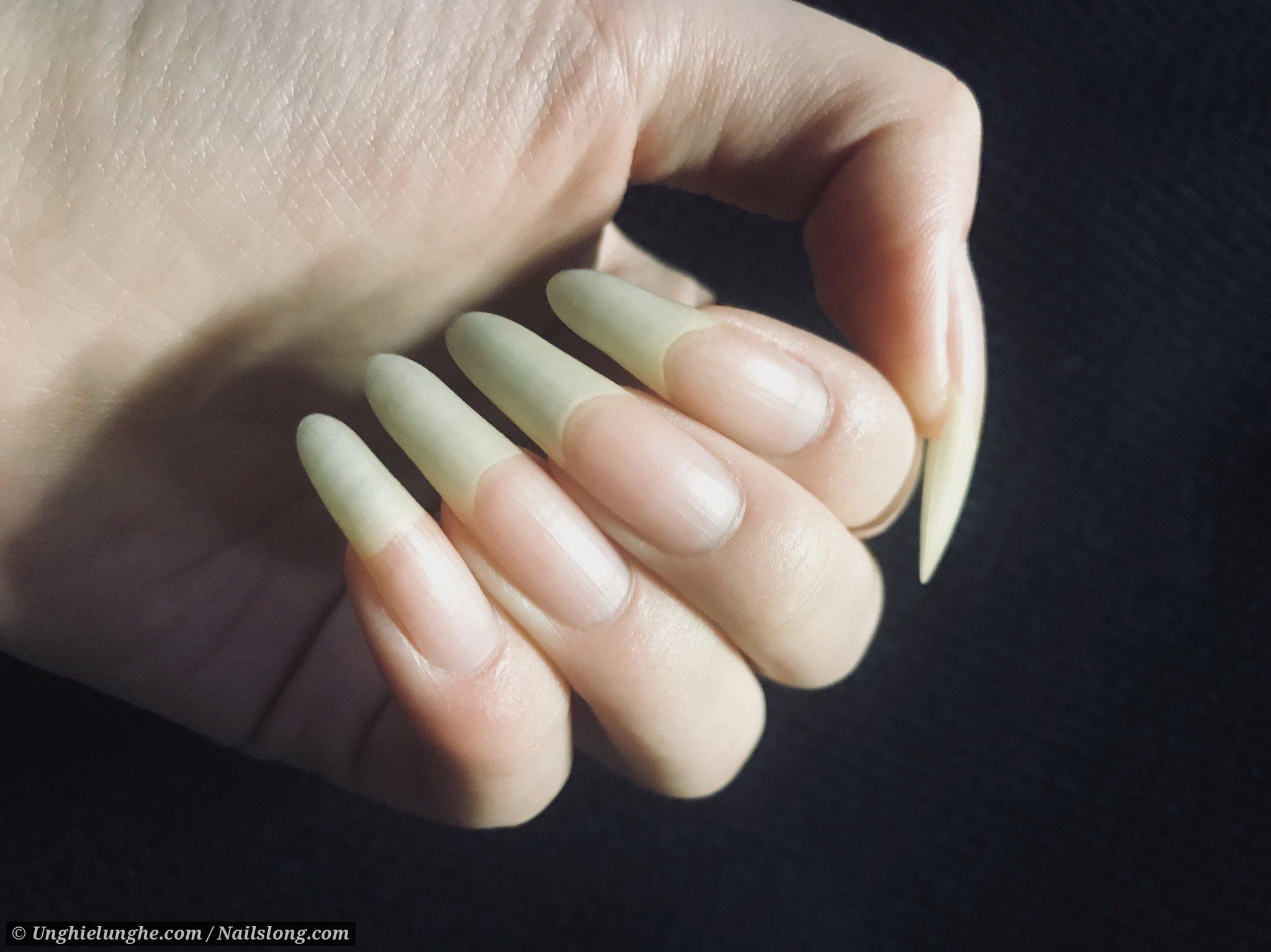 Beryl - Nailslong.com