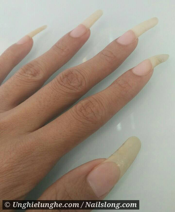 NailsFashion - Nailslong.com