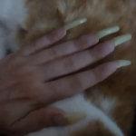 Black-Kitty video 47