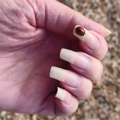 reallongnailsuk video 39